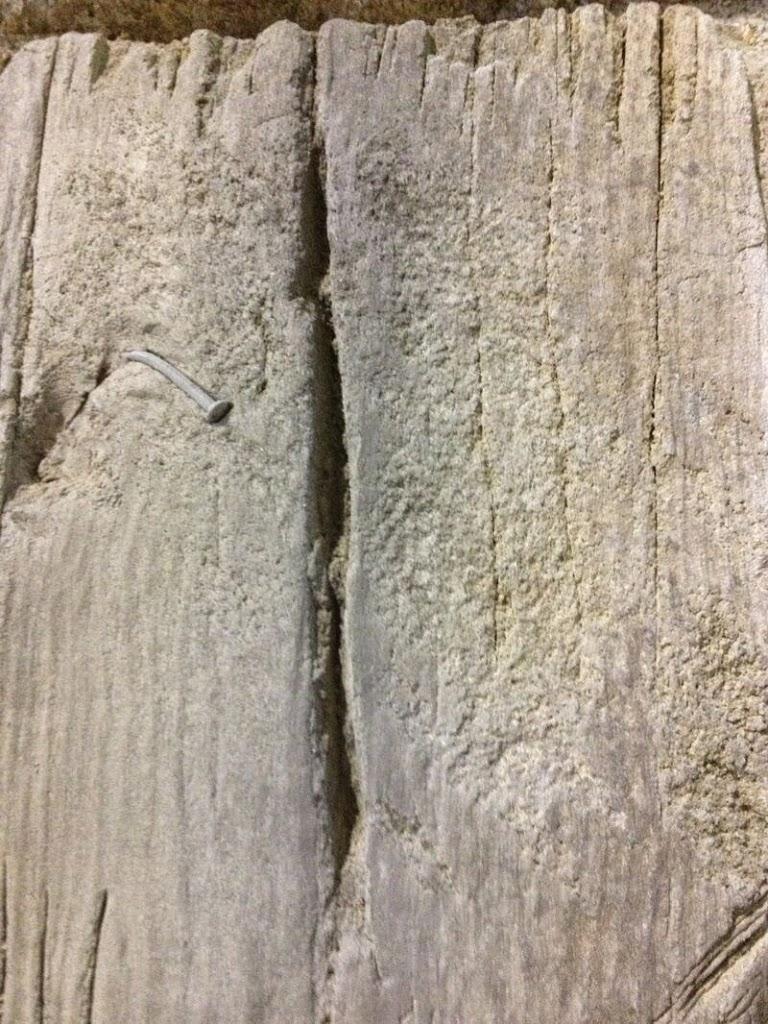 reproducción de troncos de madera con mortero