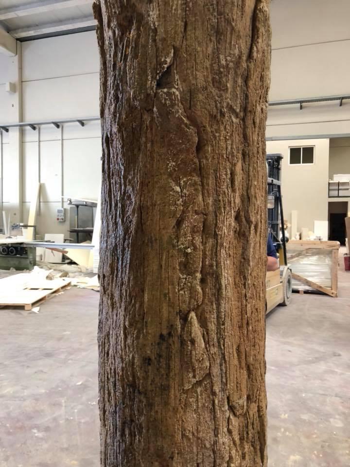 reproduccion-tronco-mortero